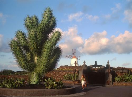 Lanzarote-04-BG10.1475231422.57ee3ebeee10e.jpg